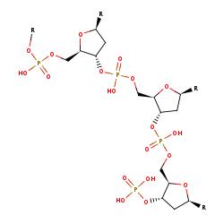 BRENDA - Information on EC 3 1 3 32 - polynucleotide 3
