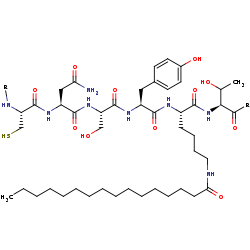 Picture of [protein]-N6-palmitoyl-L-lysine (click for magnification)