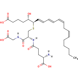 Picture of leukotriene C4 (click for magnification)