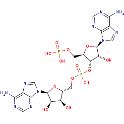 Picture of 5'-O-phosphonoadenylyl-(3'->5')-adenosine (click for magnification)