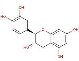 Picture of (+)-catechin (click for magnification)