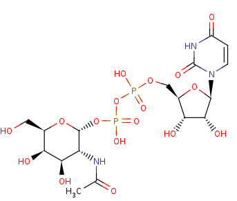 Picture of UDP-N-acetyl-alpha-D-galactosamine (click for magnification)