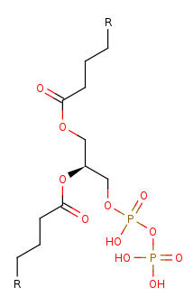 Picture of diacylglycerol diphosphate (click for magnification)