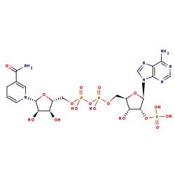 BRENDA - Ligand view of NADPH (5 - ACFIXJIJDZMPPO-NNYOXOHSSA-N)