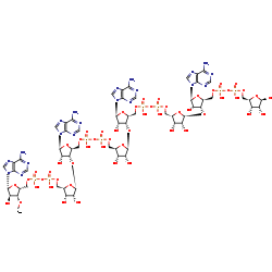 Picture of (ADP-ribose)n (click for magnification)
