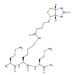Picture of [propanoyl-CoA:carbon-dioxide ligase (ADP-forming)] (click for magnification)