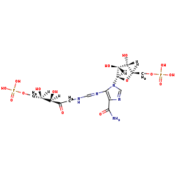 Picture of N-(5'-Phospho-D-1-ribulosylformimino)-5-amino-1-(5''-phospho-D-ribosyl)-4-imidazolecarboxamide (click for magnification)