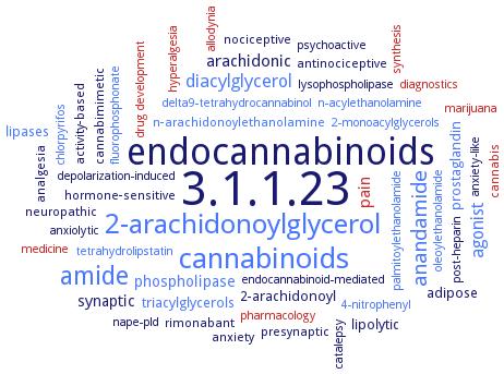 BRENDA - Information on EC 3 1 1 23 - acylglycerol lipase