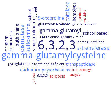 BRENDA - Information on EC 6 3 2 3 - glutathione synthase